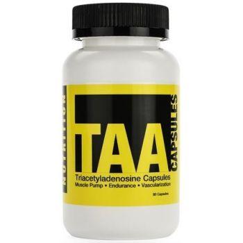 PROTOTYPE NUTRITION TAA 90 kap.