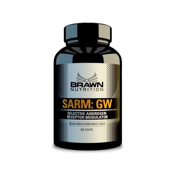 BRAWN SARM:GW 60 kap.