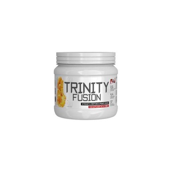 4U NUTRITION Trinity Fusion 300g