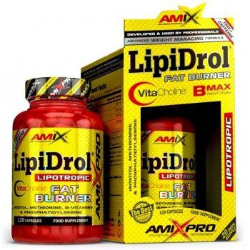 AMIX LipiDrol 120 kap.