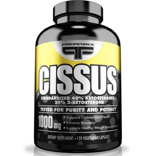 PRIMAFORCE Cissus 120 kap. 40% Ketosteronów