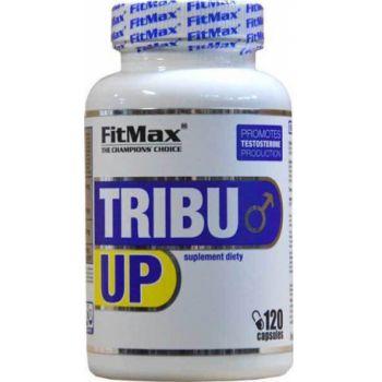 FITMAX Tribu Up 120 kap.