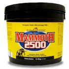 INTERACTIVE Mammoth 2500 4,4kg
