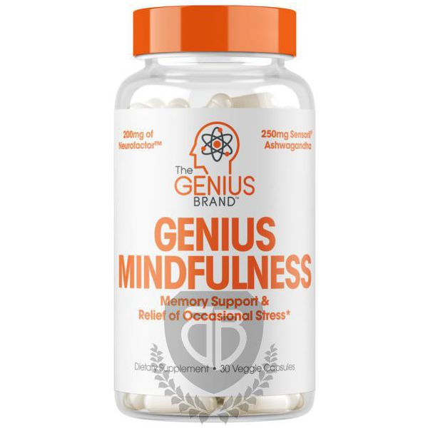 THE GENIUS BRAND Genius Mindfulness 30 kap.