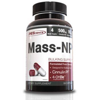 PES Mass-NP 84 kap.