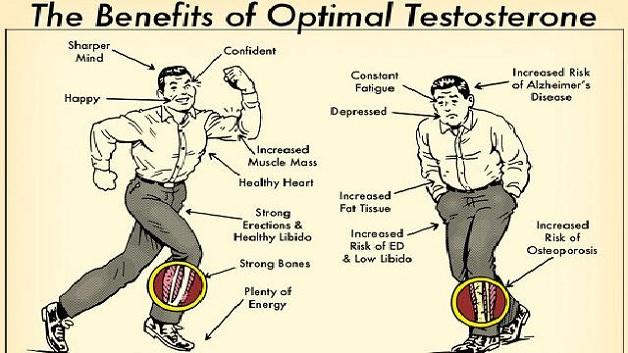 testosteron co daje