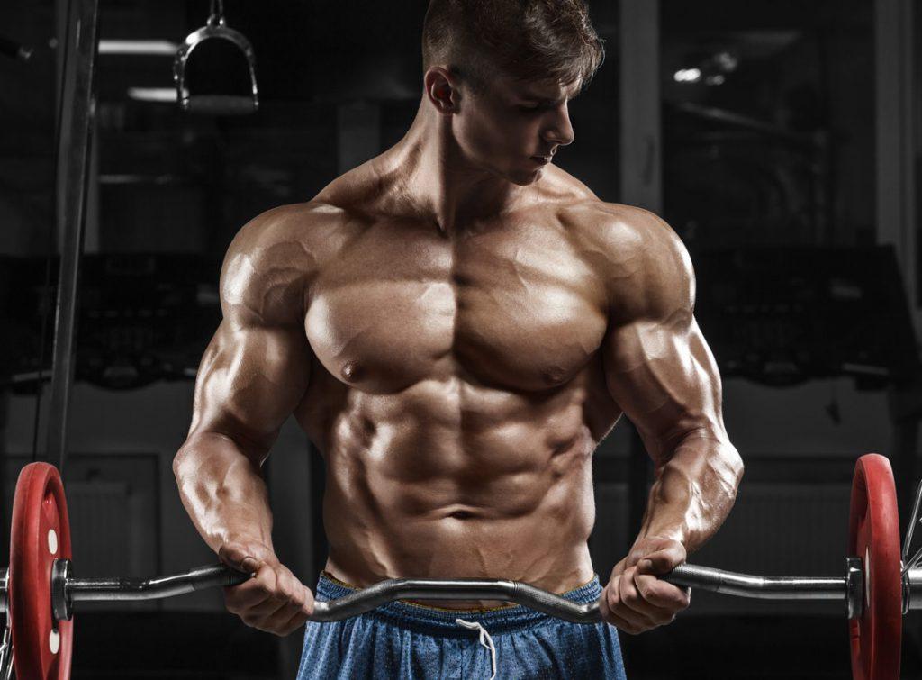 Metabolizm a przyrost siły