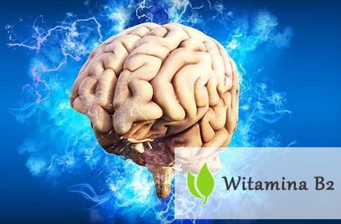 Witamina B2 - wpływ na organizm