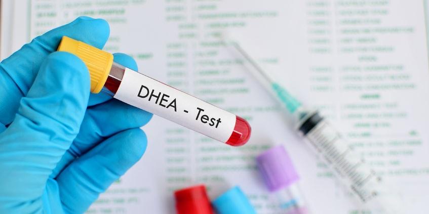 DHEA - działanie i wpływ na organizm