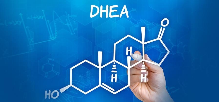 DHEA-wszystko o Dehydroepiandrosteronie