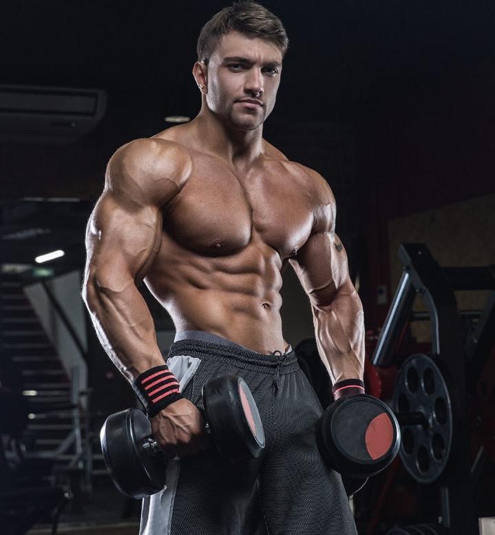 Testosteron a budowa masy mięśniowej