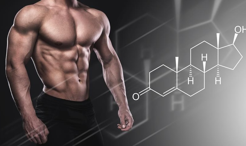 Testosteron - czym jest?