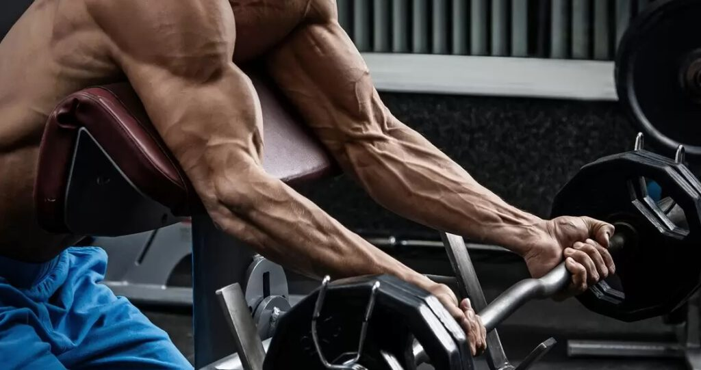 Niagen a masa mięśniowa