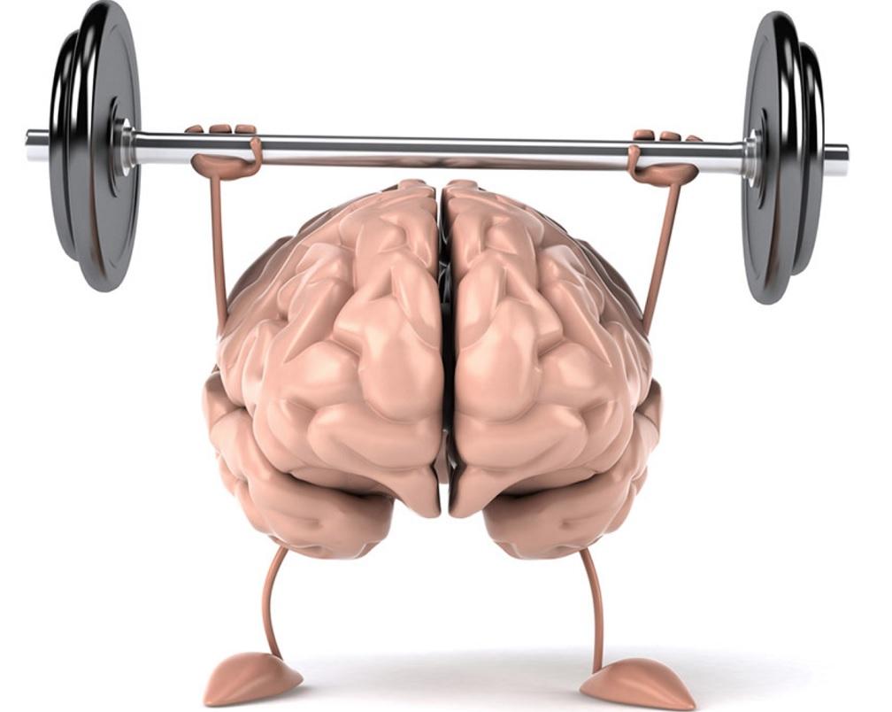 Czy pamięć mięśniowa istnieje?