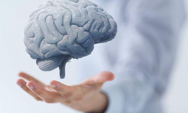 Ranking produktów nootropowych - jakie najlepsze suplementy na mózg?