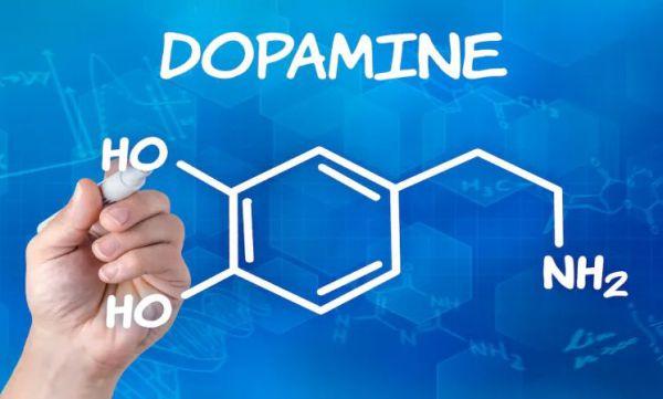 L-Dopa - jak skutecznie podnieść poziom dopaminy?