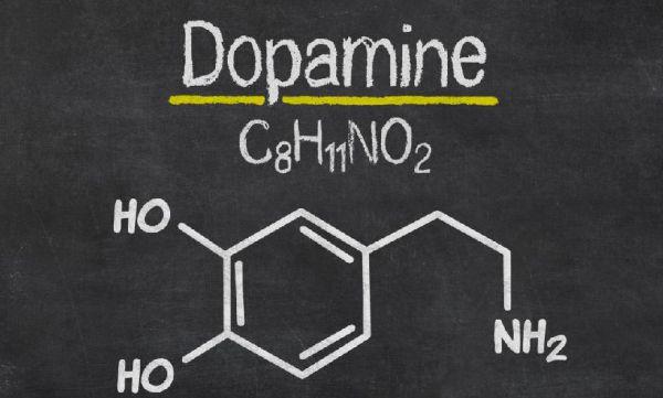 Dopamina - potwierdzona naukowo skuteczność L-Dopy